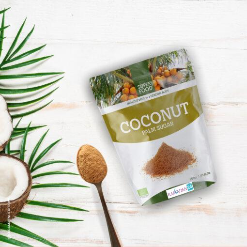 Kokos nuss Palmzucker